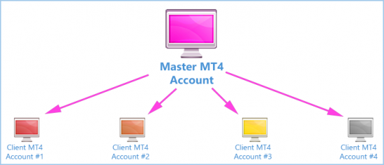 Trading multiple MT4 accounts at once (Schema)